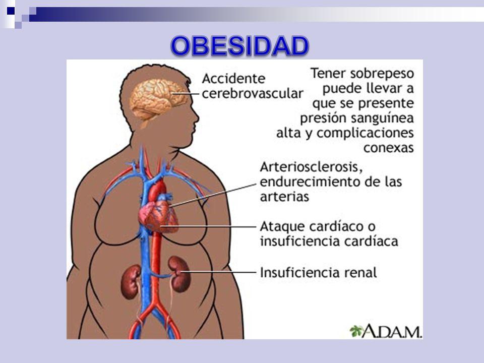 PROBLEMAS COMUNES EN OBESOS Mal manejo del calor.Fácil disnea.