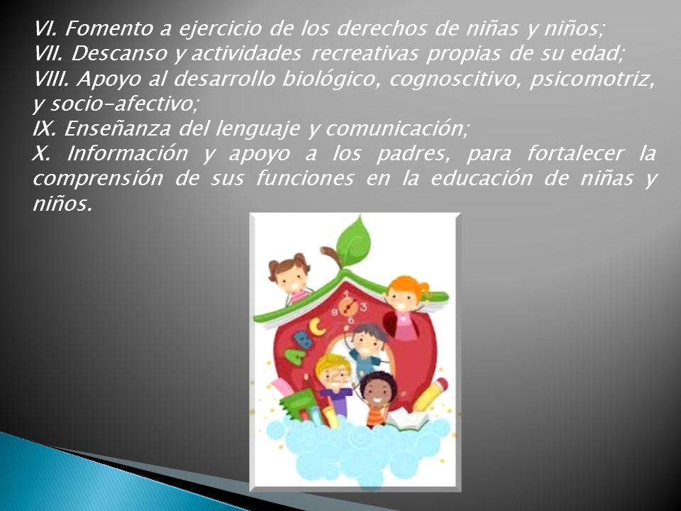 VI. Fomento a ejercicio de los derechos de niñas y niños; VII. Descanso y actividades recreativas propias de su edad; VIII. Apoyo al desarrollo biológ
