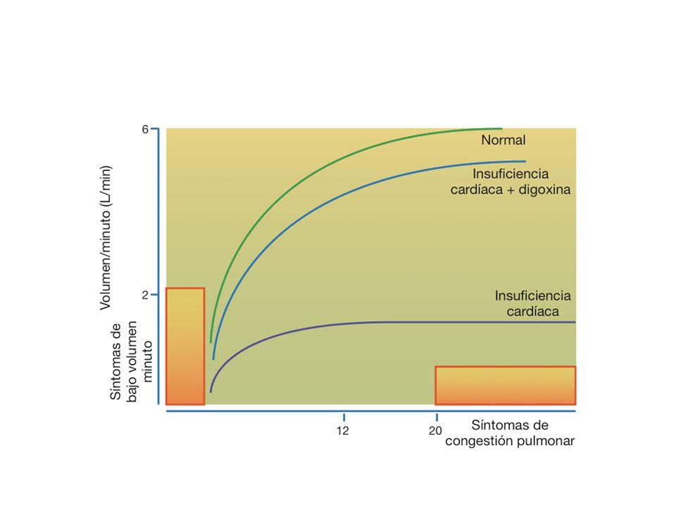 Los glucósidos cardíacos se diferencian por su capacidad de acumulación y en su rapidez de acción y de eliminación DigoxitoxinaDigoxinaOubaína Absorción gastrointestinal (%) 90-10050-80Muy irregular Biotransformación hepática (%) 906- Vía principal de excresión Renal Semivida4-6 días36-48 horas21 horas