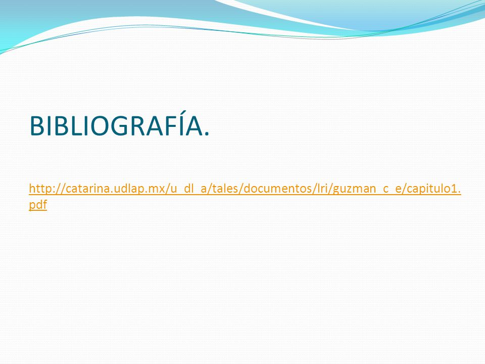BIBLIOGRAFÍA. http://catarina.udlap.mx/u_dl_a/tales/documentos/lri/guzman_c_e/capitulo1. pdf http://catarina.udlap.mx/u_dl_a/tales/documentos/lri/guzm