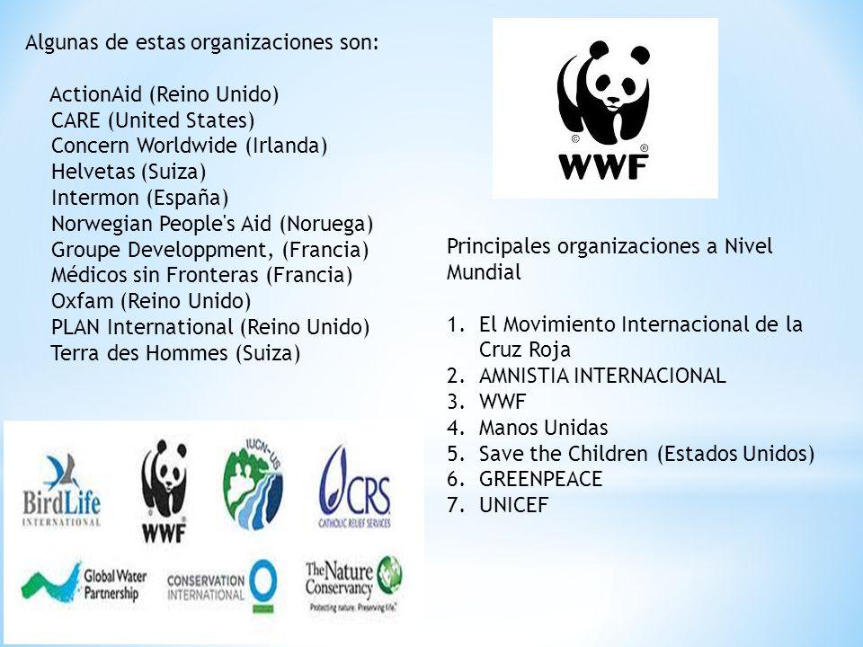 Algunas de estas organizaciones son: ActionAid (Reino Unido) CARE (United States) Concern Worldwide (Irlanda) Helvetas (Suiza) Intermon (España) Norwe