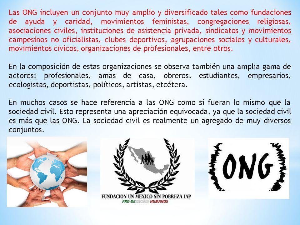 Las ONG incluyen un conjunto muy amplio y diversificado tales como fundaciones de ayuda y caridad, movimientos feministas, congregaciones religiosas,
