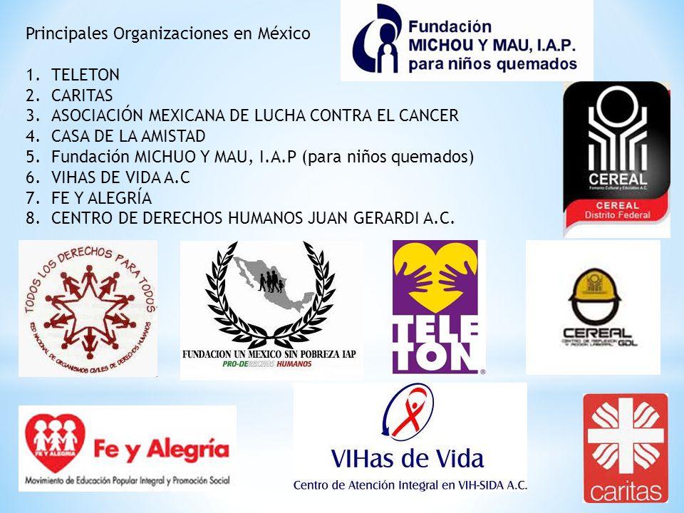 Principales Organizaciones en México 1.TELETON 2.CARITAS 3.ASOCIACIÓN MEXICANA DE LUCHA CONTRA EL CANCER 4.CASA DE LA AMISTAD 5.Fundación MICHUO Y MAU