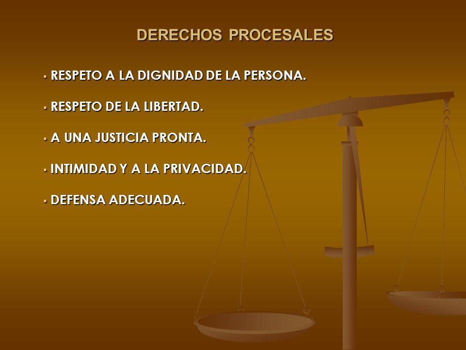 DERECHOS PROCESALES RESPETO A LA DIGNIDAD DE LA PERSONA. RESPETO A LA DIGNIDAD DE LA PERSONA. RESPETO DE LA LIBERTAD. RESPETO DE LA LIBERTAD. A UNA JU
