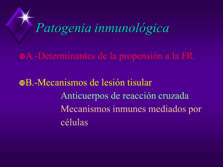 Patogenia inmunológica A.-Determinantes de la propensión a la FR. B.-Mecanismos de lesión tisular Anticuerpos de reacción cruzada Mecanismos inmunes m