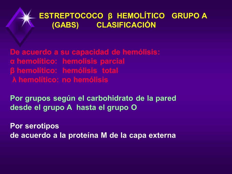 ESTREPTOCOCO β HEMOLÍTICO GRUPO A (GABS) CLASIFICACIÓN De acuerdo a su capacidad de hemólisis: α hemolítico: hemolisis parcial β hemolítico: hemólisis