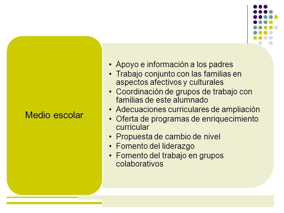 Apoyo e información a los padres Trabajo conjunto con las familias en aspectos afectivos y culturales Coordinación de grupos de trabajo con familias d
