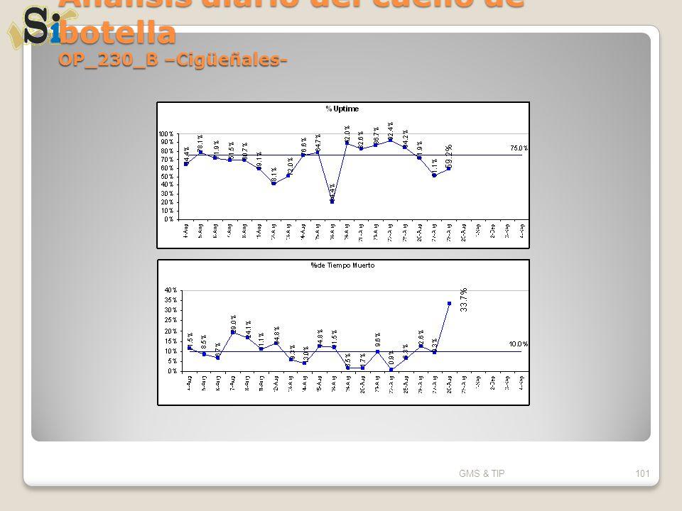 Análisis diario del cuello de botella OP_230_B –Cigüeñales- GMS & TIP101