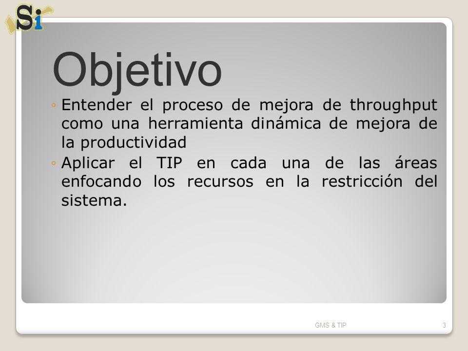 Análisis diario del cuello de botella OP_230_B –Cigüeñales- GMS & TIP104