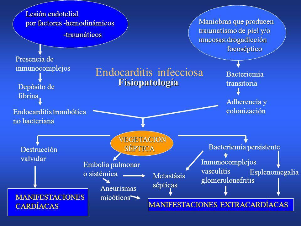 Endocarditis Infecciosa Válvula nativaVálvula nativa Válvula protésicaVálvula protésica –Temprana < 12 meses –tardía > 12 meses Drogadictos(ADVP)Droga