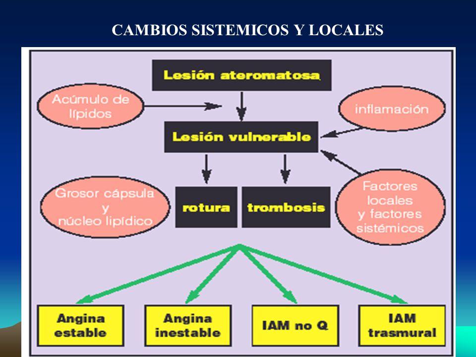 CAMBIOS SISTEMICOS Y LOCALES