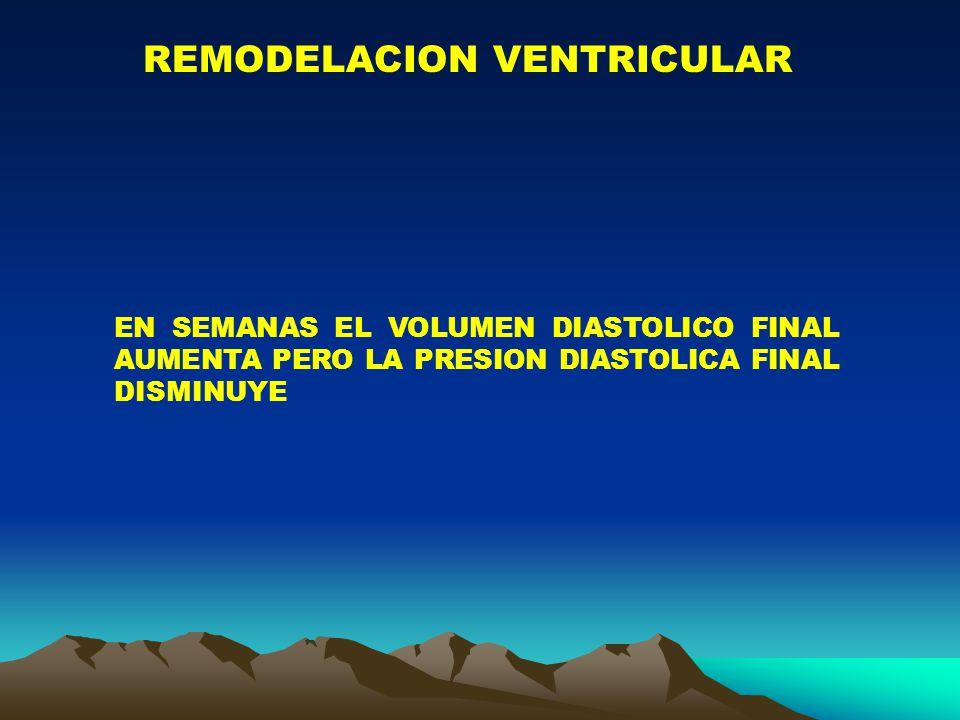 REMODELACION VENTRICULAR EN SEMANAS EL VOLUMEN DIASTOLICO FINAL AUMENTA PERO LA PRESION DIASTOLICA FINAL DISMINUYE