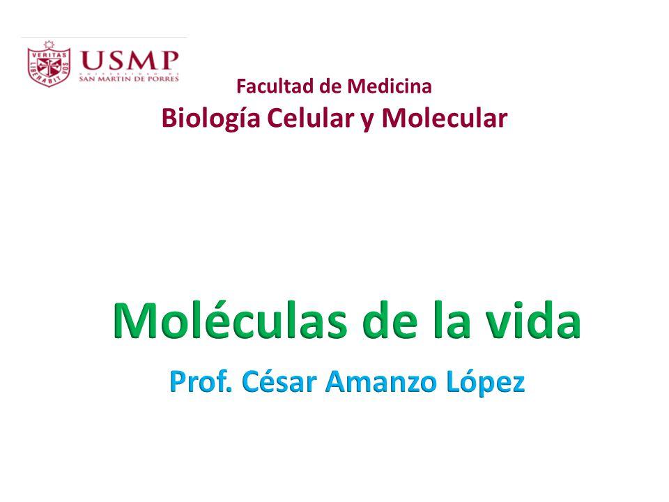 Las células contienen mucho más moléculas de proteínas que moléculas de ADN.