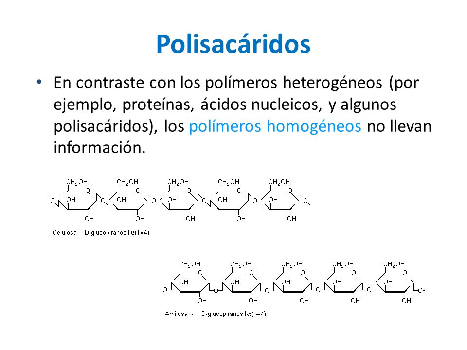 Polisacáridos En contraste con los polímeros heterogéneos (por ejemplo, proteínas, ácidos nucleicos, y algunos polisacáridos), los polímeros homogéneo