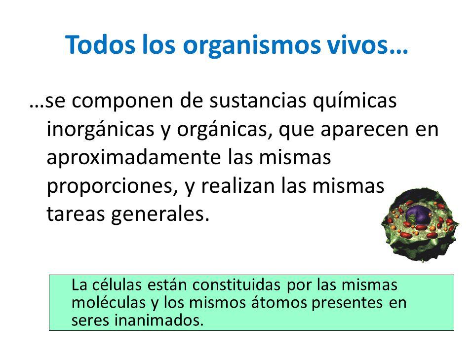 Todos los organismos vivos… …se componen de sustancias químicas inorgánicas y orgánicas, que aparecen en aproximadamente las mismas proporciones, y re