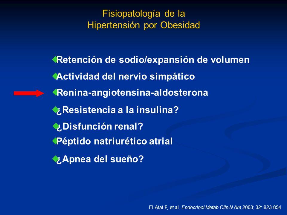 Fisiopatología de la Hipertensión por Obesidad Retención de sodio/expansión de volumen Actividad del nervio simpático Renina-angiotensina-aldosterona