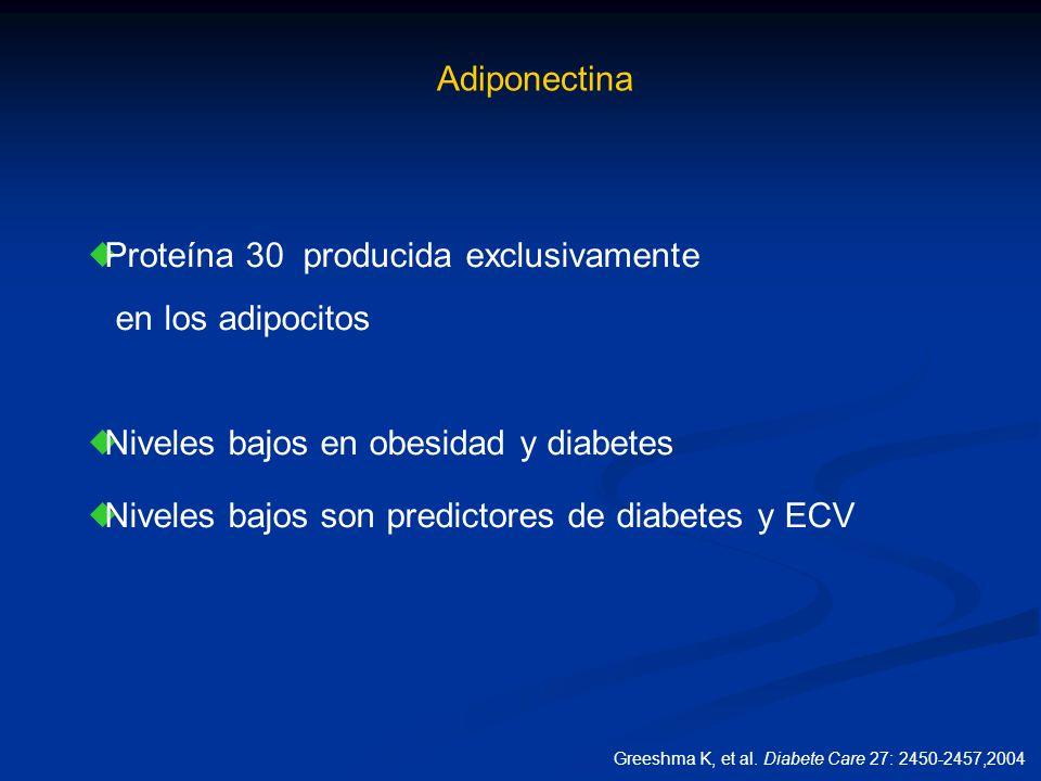 Adiponectina Proteína 30 producida exclusivamente en los adipocitos Niveles bajos en obesidad y diabetes Niveles bajos son predictores de diabetes y E