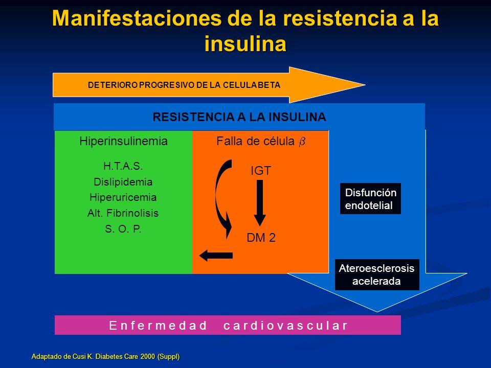 Manifestaciones de la resistencia a la insulina E n f e r m e d a d c a r d i o v a s c u l a r Hiperinsulinemia H.T.A.S. Dislipidemia Hiperuricemia A