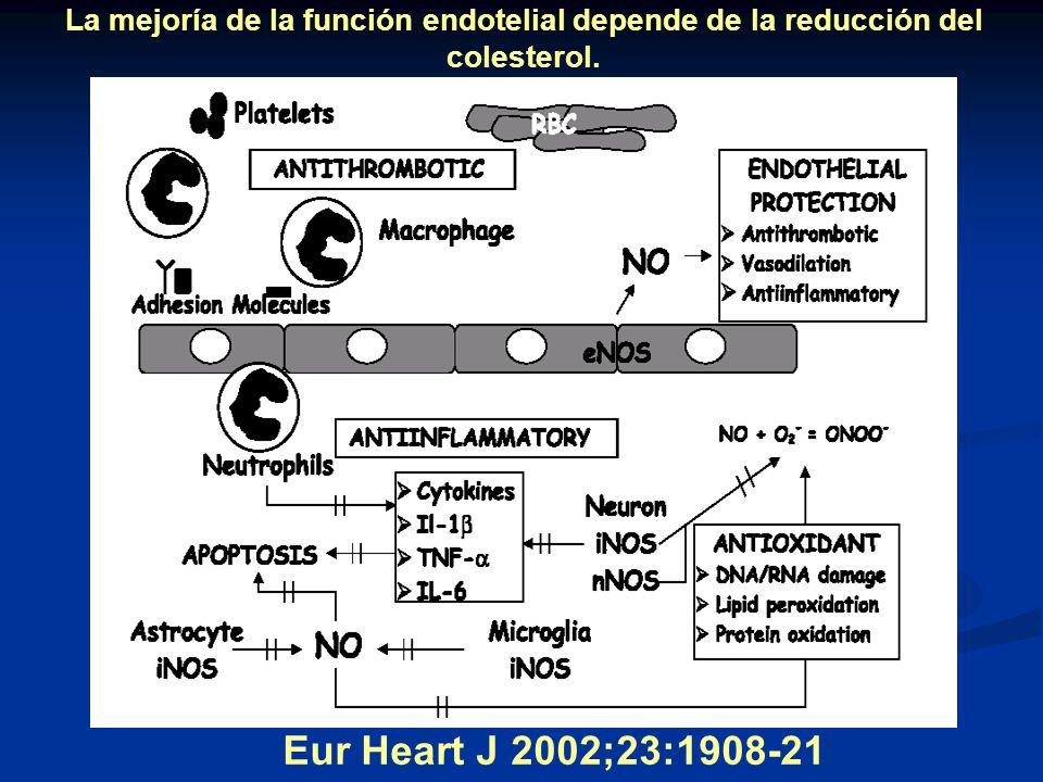 La mejoría de la función endotelial depende de la reducción del colesterol. Eur Heart J 2002;23:1908-21