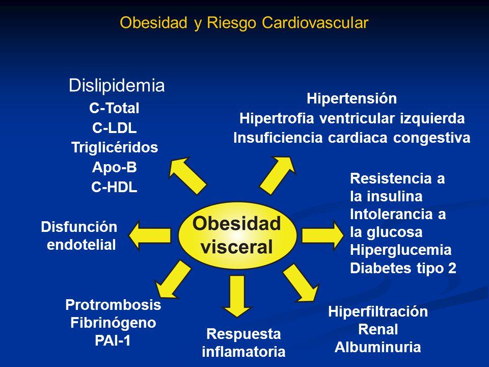 Historia Natural del Síndrome Metabólico Genética Alterada Obesidad Central (Visceral) Estrés Oxidativo Disfunción Endotelial Inflamación Resistencia a la Insulina e Hiperinsulinemia Aterogénesis Estadio I Obesidad TG normal Estadio II Obesidad Dislipidemia ITG Normotensión Eventos Cardiovasculares Estadio III Obesidad Dislipidemia DM 2 Hipertensión Disfunción de Células Secreción de Insulina Transporte de Glucosa Producción de Glucosa Horizonte clínico Hiperglicemia Postpandrial DM2 Hipertensión Obesidad Dislipidemia MacroangiopatíaMicroangiopatía IRCTEVCICCVIAM