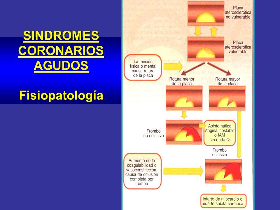 SINDROMES CORONARIOS AGUDOS Fisiopatología