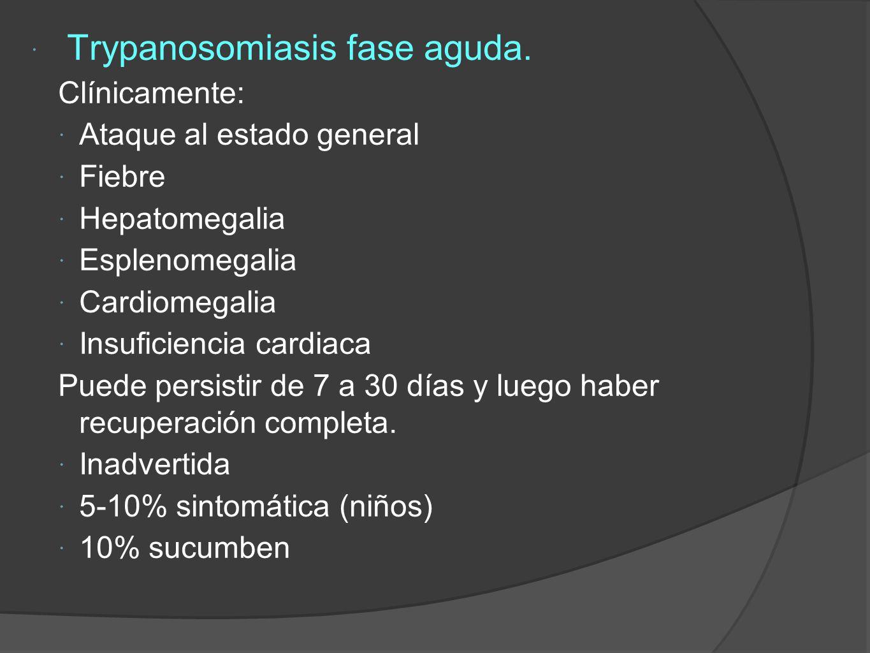 Trypanosomiasis fase aguda.