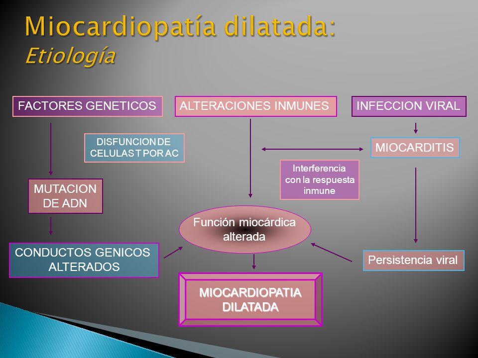 MIOCARDIOPATIADILATADA FACTORES GENETICOSALTERACIONES INMUNES DISFUNCION DE CELULAS T POR AC MUTACION DE ADN CONDUCTOS GENICOS ALTERADOS Interferencia con la respuesta inmune MIOCARDITIS Persistencia viral Función miocárdica alterada INFECCION VIRAL
