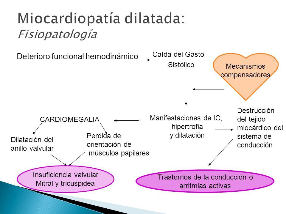 Caída del Gasto Sistólico Deterioro funcional hemodinámico Mecanismos compensadores Manifestaciones de IC, hipertrofia y dilatación CARDIOMEGALIA Insuficiencia valvular Mitral y tricuspidea Dilatación del anillo valvular Perdida de orientación de músculos papilares Destrucción del tejido miocárdico del sistema de conducción Trastornos de la conducción o arritmias activas