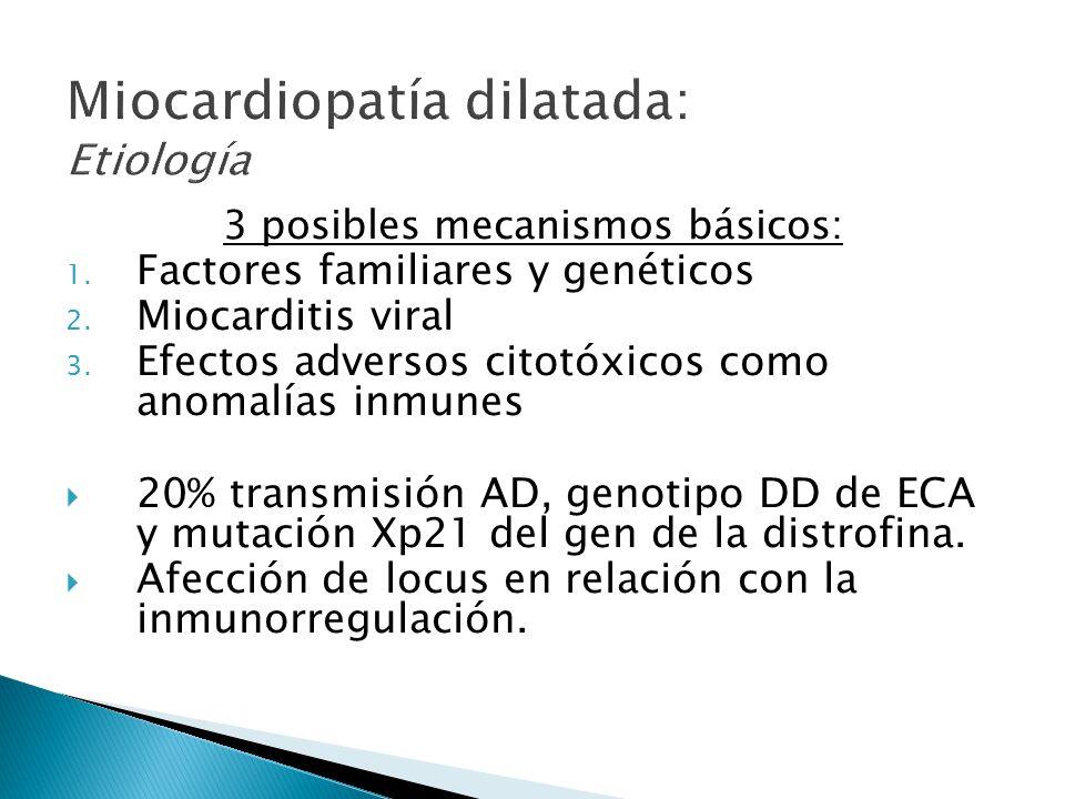 3 posibles mecanismos básicos: 1.Factores familiares y genéticos 2.
