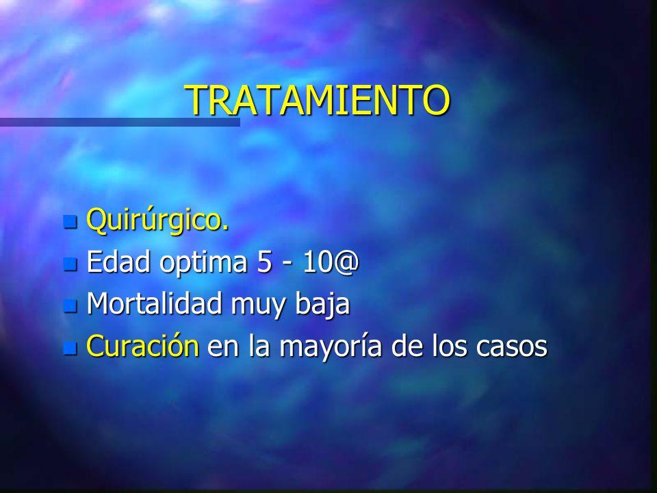 TRATAMIENTO n Quirúrgico. n Edad optima 5 - 10@ n Mortalidad muy baja n Curación en la mayoría de los casos