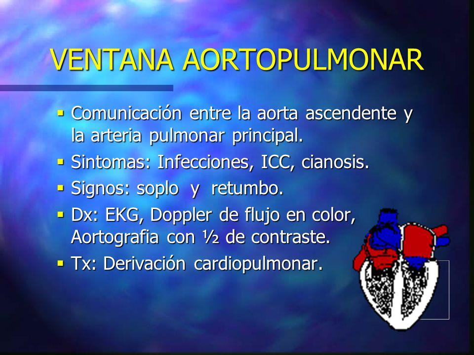 VENTANA AORTOPULMONAR Comunicación entre la aorta ascendente y la arteria pulmonar principal. Comunicación entre la aorta ascendente y la arteria pulm
