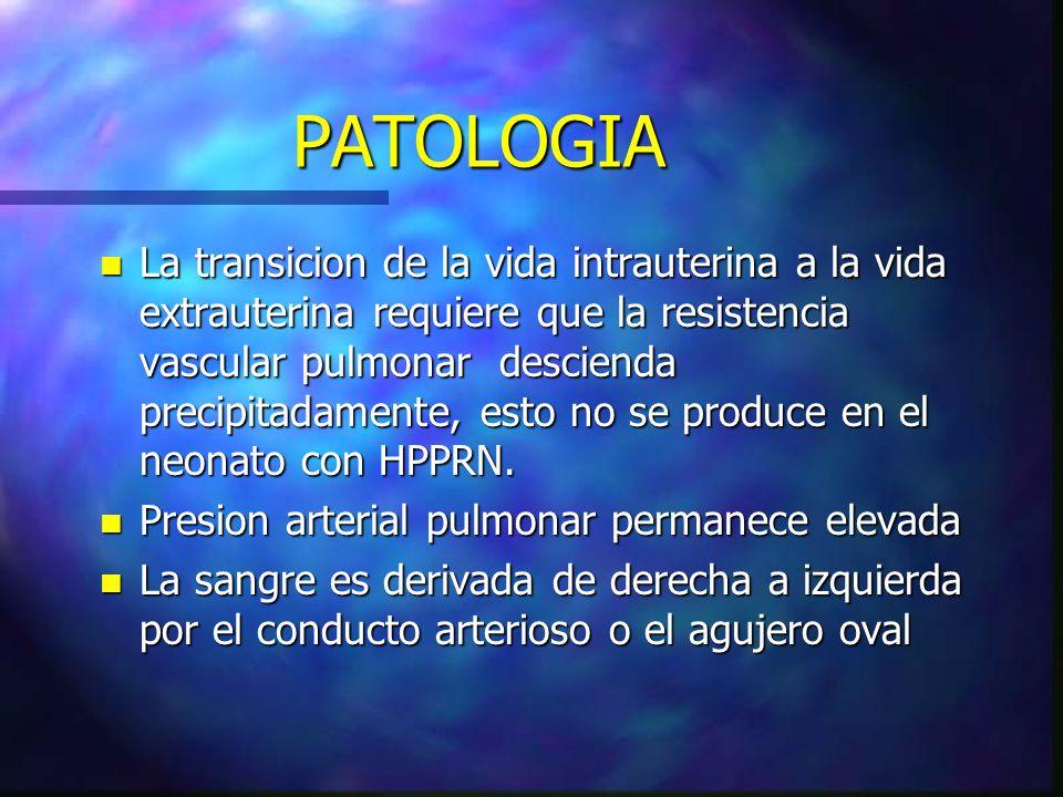 PATOLOGIA n La transicion de la vida intrauterina a la vida extrauterina requiere que la resistencia vascular pulmonar descienda precipitadamente, est