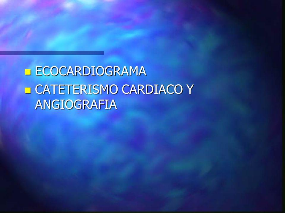 n ECOCARDIOGRAMA n CATETERISMO CARDIACO Y ANGIOGRAFIA
