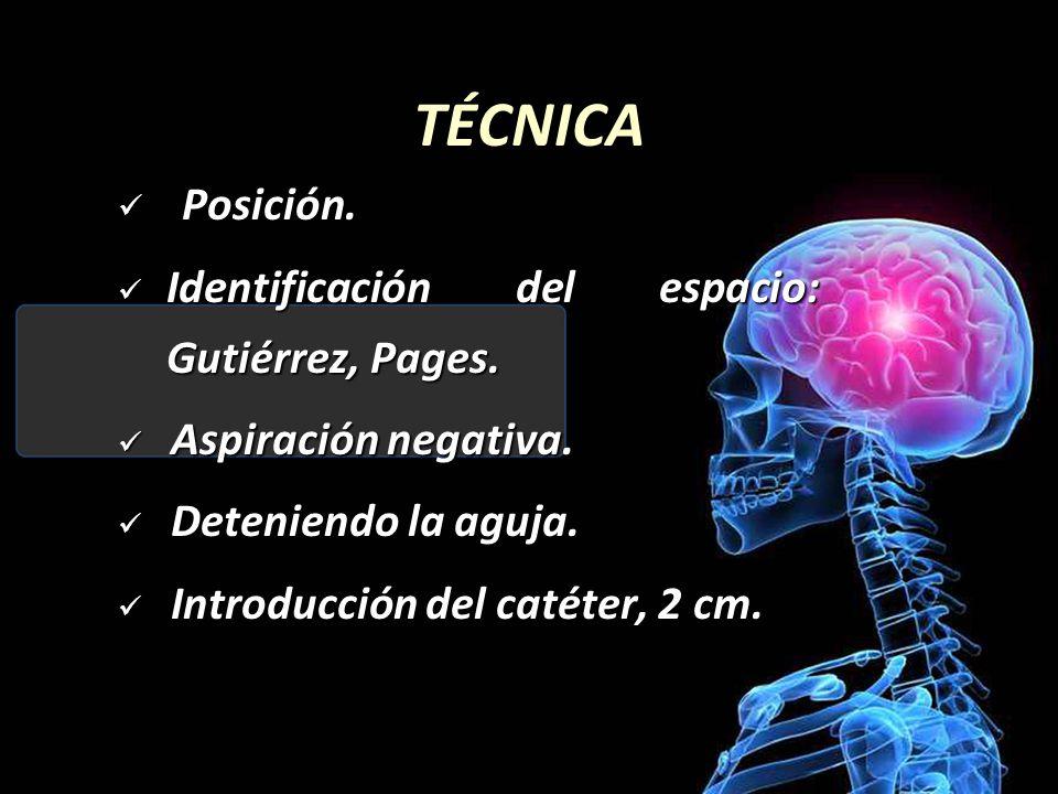 TÉCNICA Posición.Posición. Identificación del espacio: Gutiérrez, Pages.