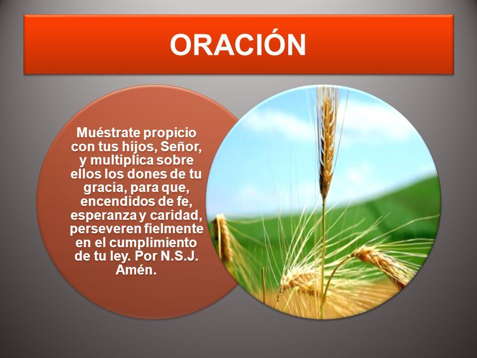 ORACIÓN Muéstrate propicio con tus hijos, Señor, y multiplica sobre ellos los dones de tu gracia, para que, encendidos de fe, esperanza y caridad, per
