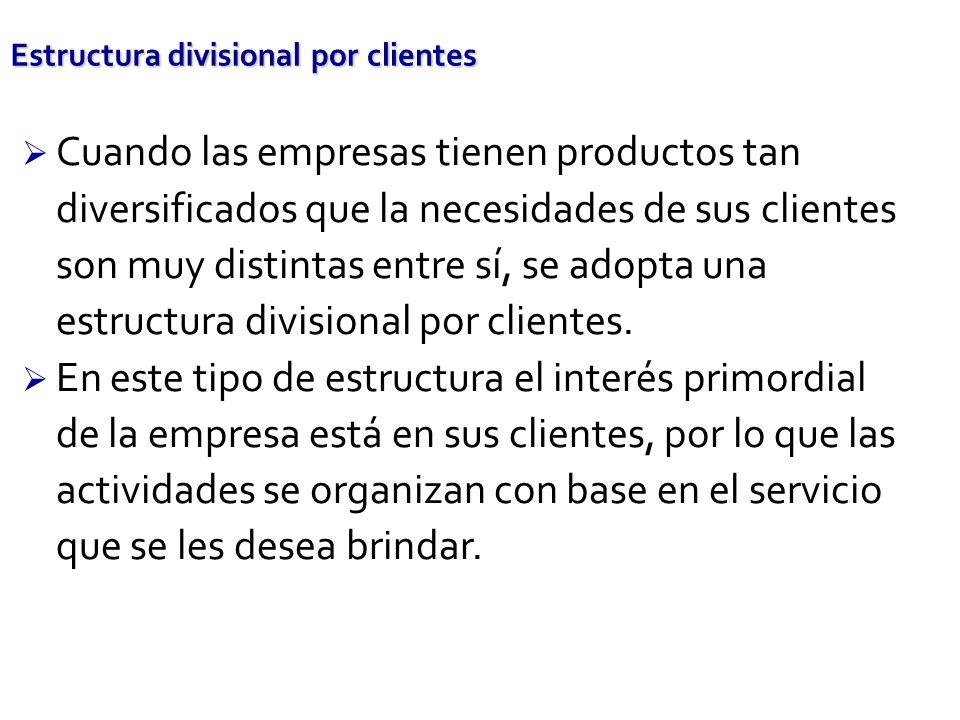 Estructura divisional por clientes Cuando las empresas tienen productos tan diversificados que la necesidades de sus clientes son muy distintas entre sí, se adopta una estructura divisional por clientes.