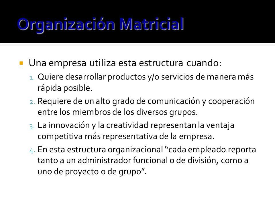 Una empresa utiliza esta estructura cuando: 1.