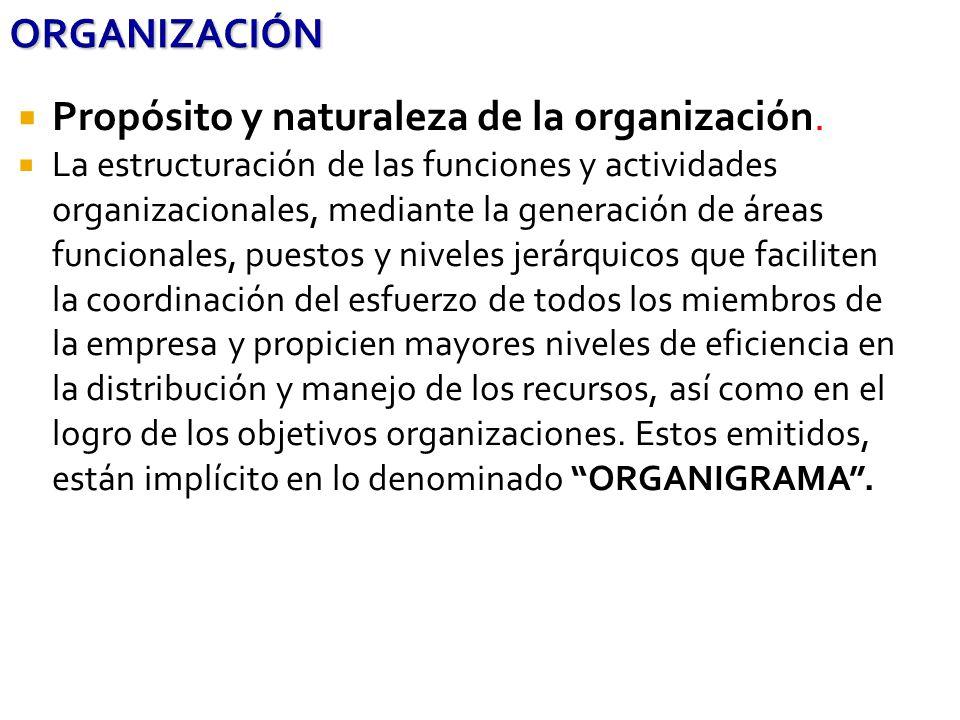 ORGANIZACIÓN Propósito y naturaleza de la organización. La estructuración de las funciones y actividades organizacionales, mediante la generación de á