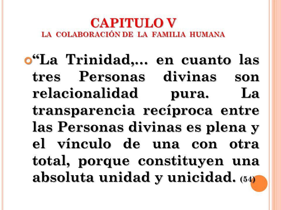 CAPITULO V LA COLABORACIÓN DE LA FAMILIA HUMANA La Trinidad,… en cuanto las tres Personas divinas son relacionalidad pura. La transparencia recíproca
