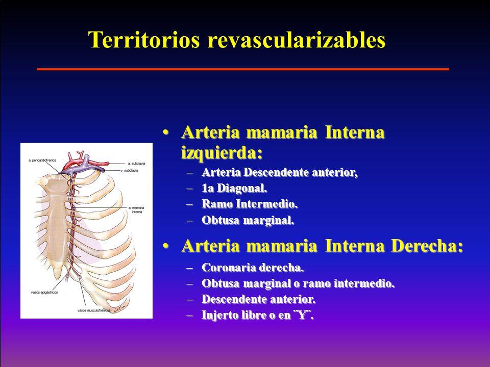 Territorios revascularizables Arteria mamaria Interna izquierda:Arteria mamaria Interna izquierda: –Arteria Descendente anterior, –1a Diagonal. –Ramo