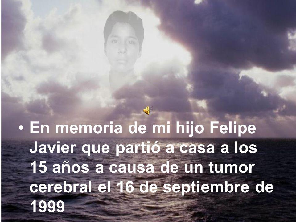 En memoria de mi hijo Felipe Javier que partió a casa a los 15 años a causa de un tumor cerebral el 16 de septiembre de 1999