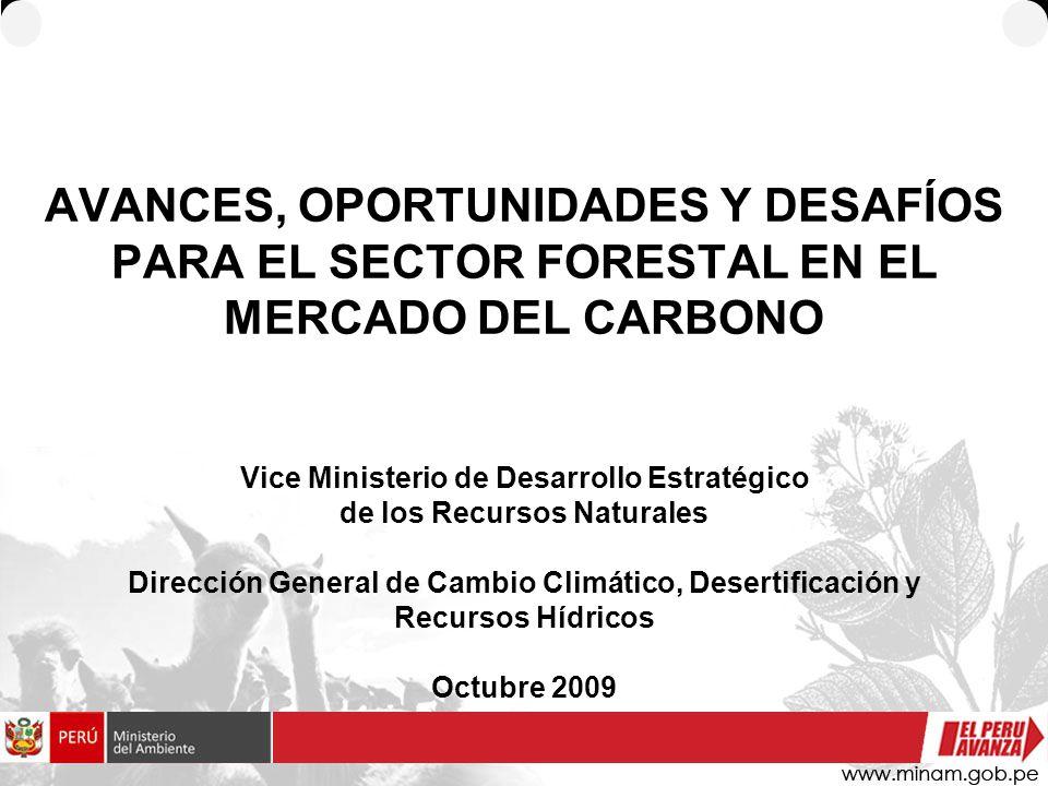 AVANCES, OPORTUNIDADES Y DESAFÍOS PARA EL SECTOR FORESTAL EN EL MERCADO DEL CARBONO Vice Ministerio de Desarrollo Estratégico de los Recursos Naturales Dirección General de Cambio Climático, Desertificación y Recursos Hídricos Octubre 2009