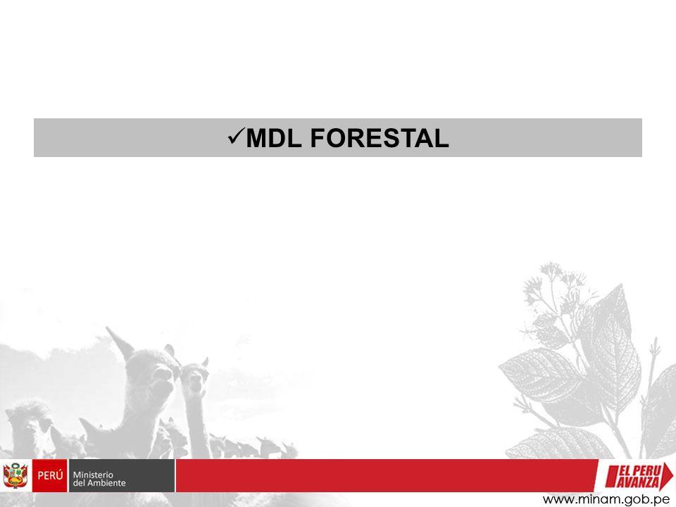 MDL FORESTAL