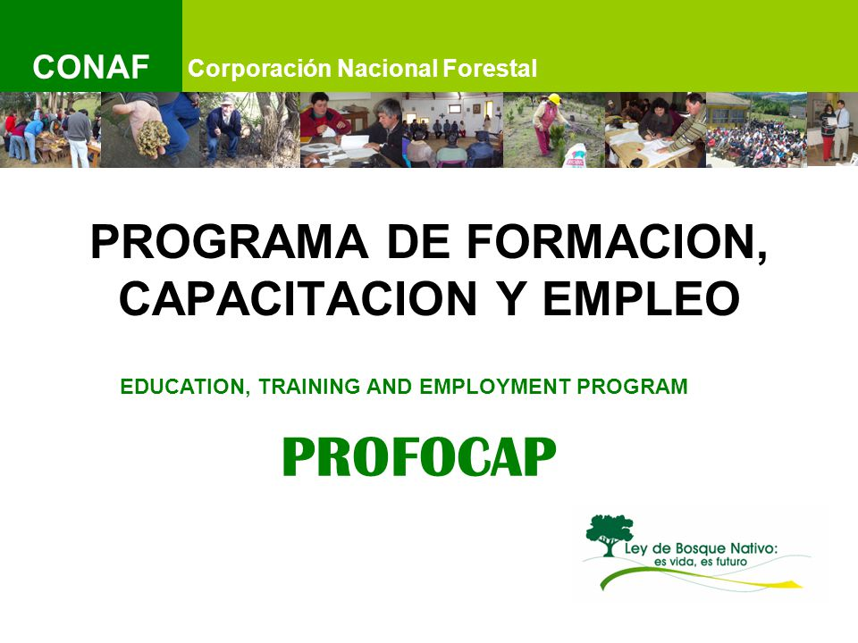IMAGEN Corporación Nacional Forestal CONAF PROGRAMA DE FORMACION, CAPACITACION Y EMPLEO EDUCATION, TRAINING AND EMPLOYMENT PROGRAM PROFOCAP