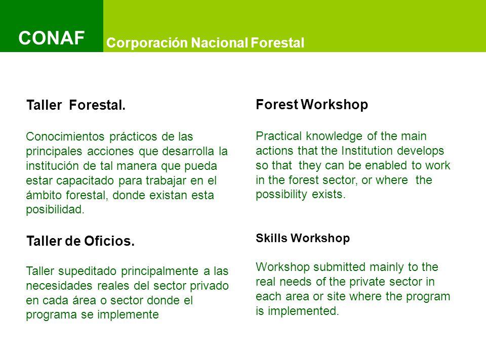 Título del Documento y Título del Documento IMAGEN Título del Documento y Título del Documento IMAGEN Título del Documento y Título del Documento IMAGEN Corporación Nacional Forestal CONAF Taller Forestal.