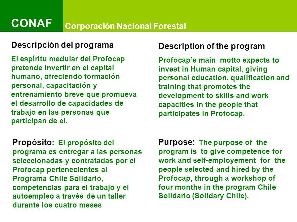 Título del Documento y Título del Documento IMAGEN Título del Documento y Título del Documento IMAGEN Título del Documento y Título del Documento IMAGEN Corporación Nacional Forestal CONAF Condiciones para la contratación: 1.- Que pertenezcan al Programa Chile Solidario.