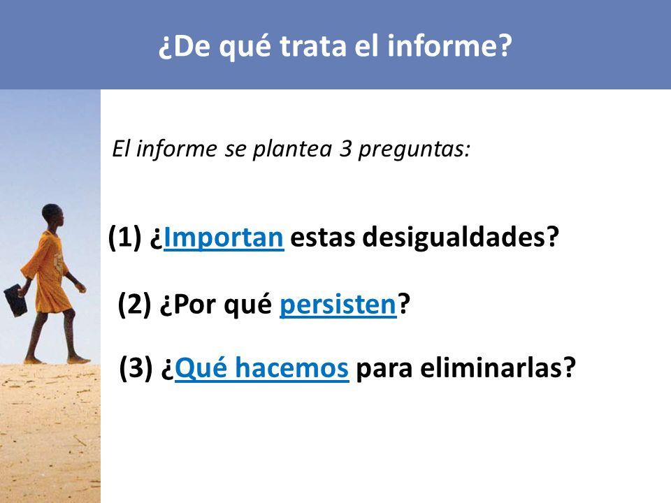 ¿De qué trata el informe.El informe se plantea 3 preguntas: (1) ¿Importan estas desigualdades.
