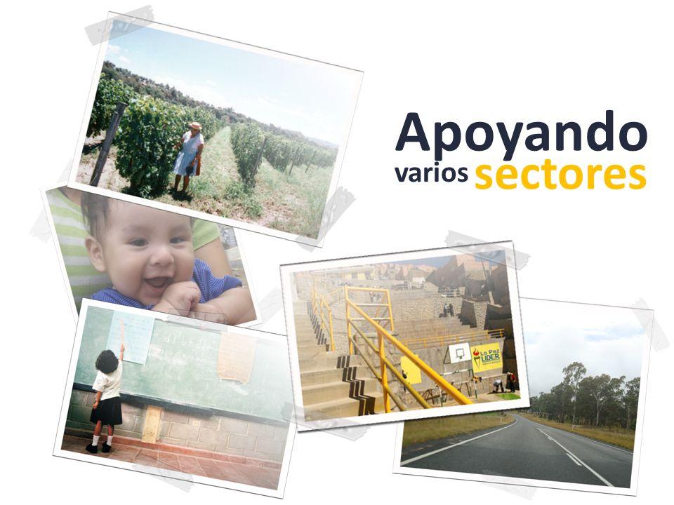 Apoyando varios sectores
