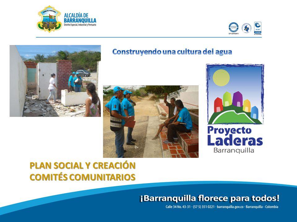 PLAN SOCIAL Y CREACIÓN COMITÉS COMUNITARIOS