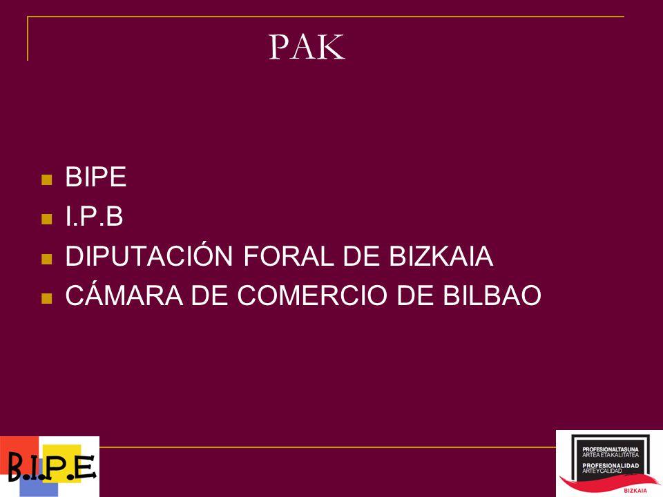 BIPE I.P.B DIPUTACIÓN FORAL DE BIZKAIA CÁMARA DE COMERCIO DE BILBAO